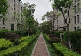 江山里 复式230平米 豪宅 看江景业主诚意出售398万