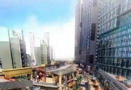 高铁新区高铁站右侧绿地第壹街45至255平商铺单价