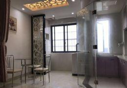 金洲城,一室一厅一厨一卫,温馨装修,住家风格,拎包