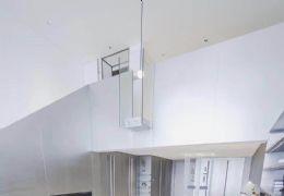 新区 5米层高 派克公寓42平-116平不限购来约