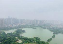 云星公园大观 万象城购物中心旁 俯瞰章江新区生态公