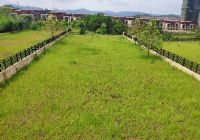 九里峰山 独栋别墅 正规五房 带花园600㎡左右
