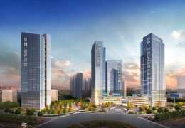 中创派克公寓,5米层高42平两房复式,中心位置好租