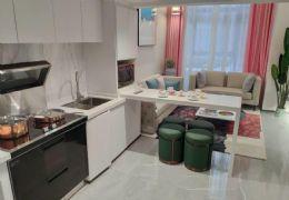 贛州中心天樞 精裝修復式公寓 買一得二 中央公園旁