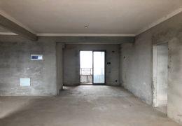 嘉福金融中心184平 通透户型 全线江景 有车位售