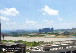 濱江一線金融中心大四房南北通透142平203萬售