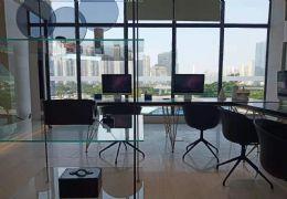中创国际城 复式公寓 层高5米 购一层得两层