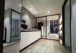 章江新区中央生态公园旁3室2厅出售  首付3万