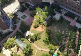 章江新區稀缺五房大平層,南北通透僅售250萬