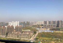 新区10000/㎡ 三阳台 视野无遮挡 房源真实