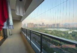云星公園大觀233平米5室2廳3衛出售