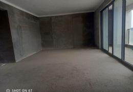 中航公元178平米4室2厅2卫出售