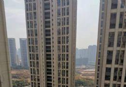 新区丽景江山142平米大四房超大阳台只要160万
