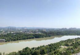 江山里,全线江景,不临桥,标准四房,带车位225万