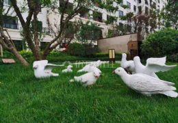 章江新区高端小区花园洋房精装四房今年刚交房