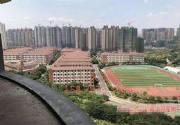 亲湖、俯瞰中学·187㎡大6房 楼王户型 有点贵`