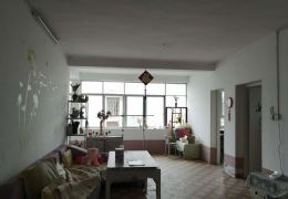 厚德路附近学区房87平米2室2厅1卫出售