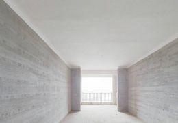 開發區圣地亞哥 正規2室2廳 樓層好視野開闊