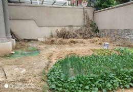 江边联排边套别墅 300平大花园 南面入户
