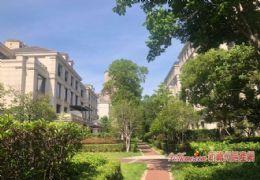 江山里·帶花園80㎡6房 地下室160㎡售260萬