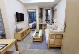 第五大道一室一廳 住宅水電 獨立陽臺 精裝拎包入住