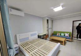 鸿泰花园  电梯公寓单间带阳台  1室1卫低价出租