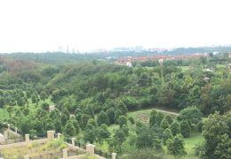 九里峰山·樓王雙拼 700㎡花園200㎡菜地 哪找