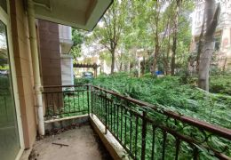 新区前后带花园单价9千出头买4房售价140万可谈