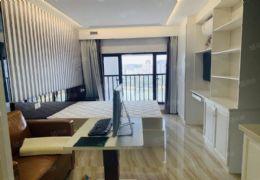 嘉福未来城复式公寓精装3房看湖景,带租约出售