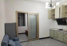 一室一厅精装修出租48平米1室1厅1卫出租