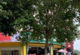 以租养供!万达广场旁临街旺铺农贸市场中学旁人流量急