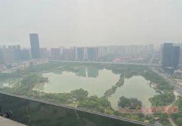 公园大观·臻选大平层 高层视野 380万俯瞰全城